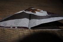 7. faltet die Seiten nach Innen, so das ein Dreieck entsteht