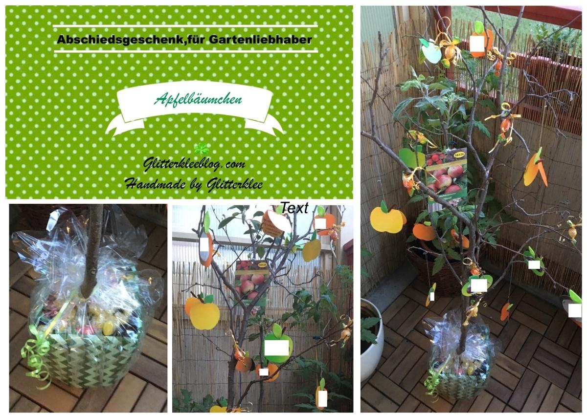 Abschiedsgeschenk Apfelbaumchen Geschenkideen