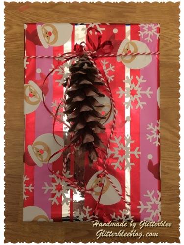 Geschenk mit Tannenzapfen-1