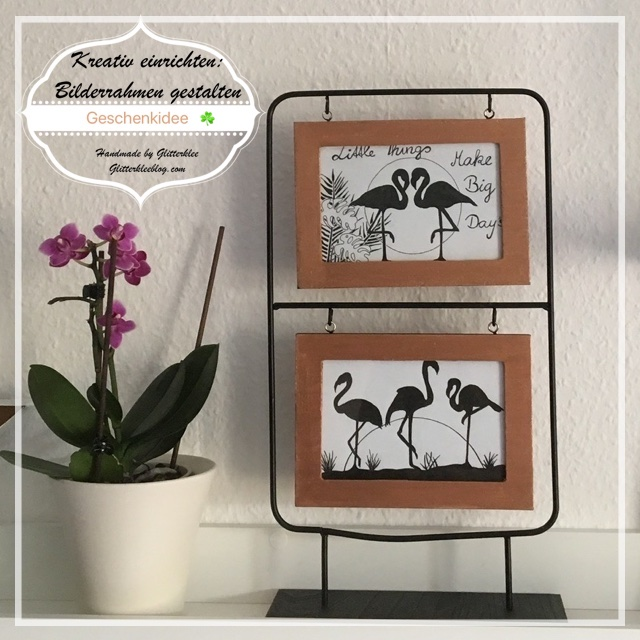 Instagram Flamingo Bild