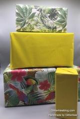 Karton verpacken-1