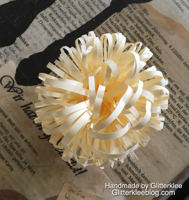 8.Blütenstempel
